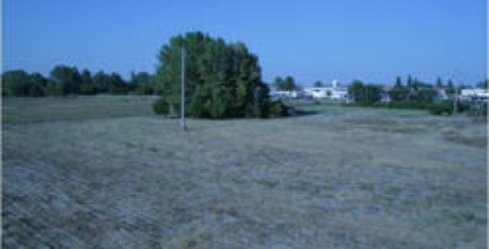 terreni comacchio